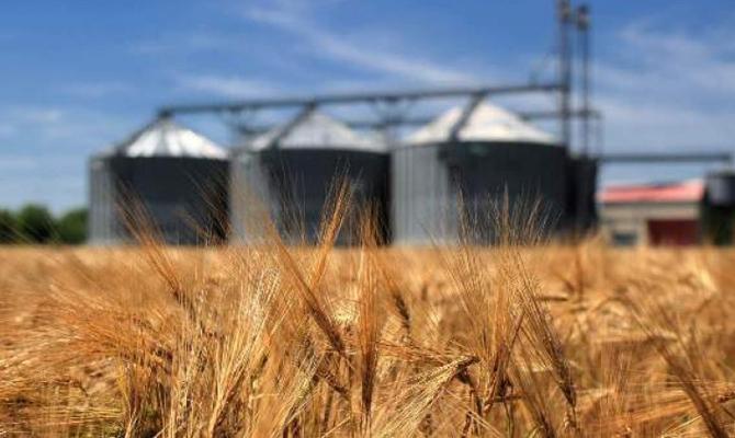 склады пшеницы