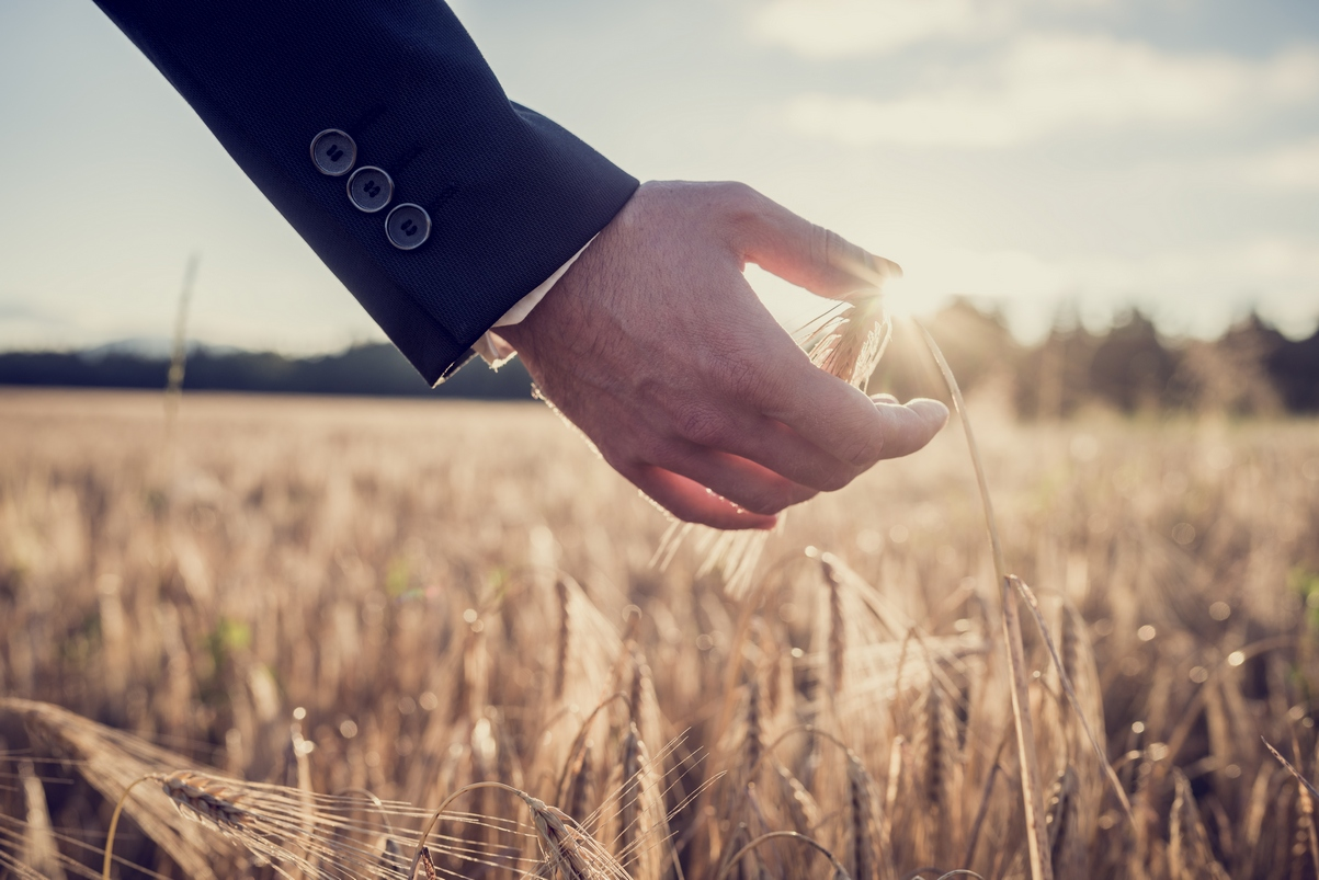 страховщики сельского хозяйства