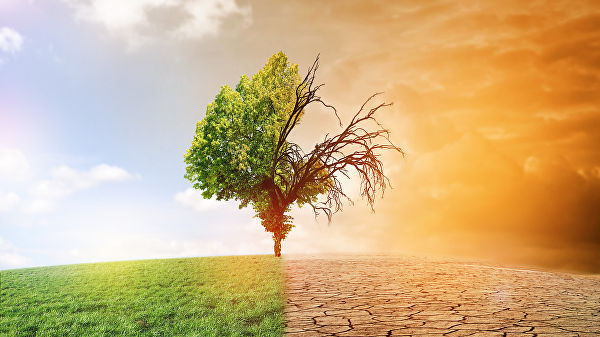 изменениям климата